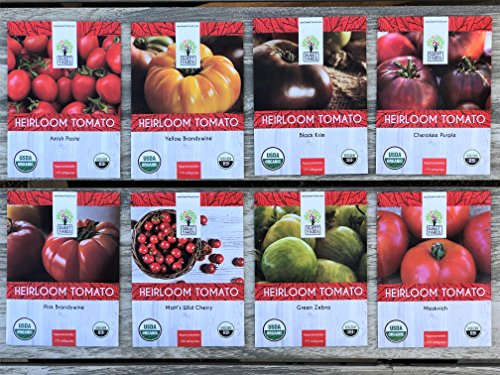 Heirloom Tomato Seeds Assortment - Eight Organic and Non-GMO Varieties: Brandywine, Cherokee Purple, Black Krim, Green Zebra, Amish Paste, Moskvich, Yellow Brandywine, Matt's Wild Cherry (Amish Paste Tomato Seeds)