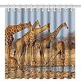 Wknoon 72 x 72 Inch Shower Curtain,Nature Wildlife Animal Giraffes Family,Waterproof Polyester Fabric Decorative Bathroom Bath Curtains