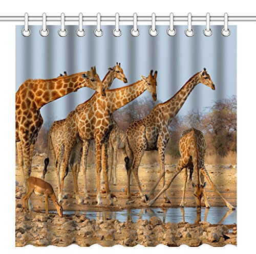 Wild Animals Polyester Shower Curtain - Wknoon 72 x 72 Inch Shower Curtain,Nature Wildlife Animal Giraffes Family,Waterproof Polyester Fabric Decorative Bathroom Bath Curtains