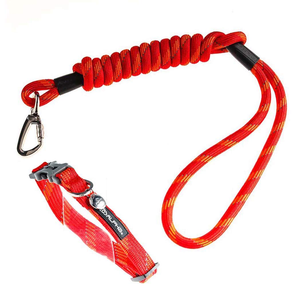 Medium Dog Leash with Reflective Strip for Small and Medium Dogs Strong Shock Absorption Adjustable Dog Collar Rope Red,M