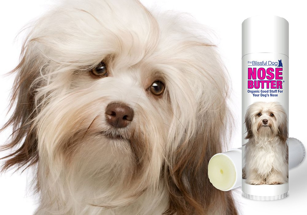 The Blissful Dog Havense Nose Butter, 0.50-Ounce by The Blissful Dog (Image #6)