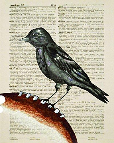 Baltimore Ravens Football Dictionary Art Print