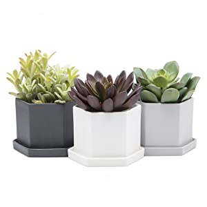 """Chive - Set of 3 Hexi, 4"""" Hexagonal Succulent and Clay Pot and Saucer, Planter with Drainage Hole and Saucer, Tray and Dish (Black, White, Grey)"""