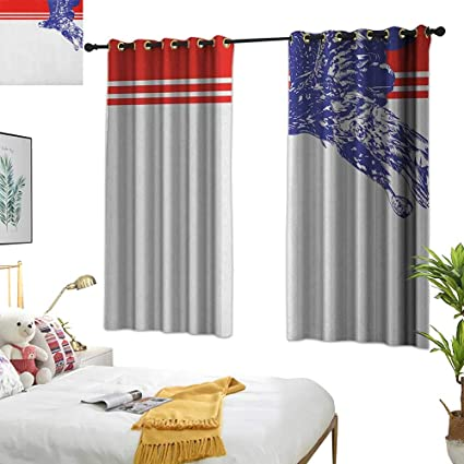 Amazon.com: Warm Family Bedroom Curtains Eagle,Colors of The ...