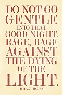 Amazon.com: Dylan Thomas Do Not Go Gentle Into That Good Night Art ...