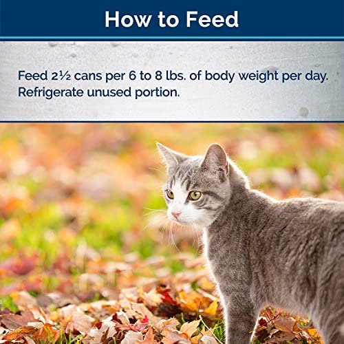 Blue Buffalo Wilderness Wild Delights High Protein Grain Free, Natural Adult Meaty Morsels Wet Cat Food 8