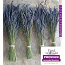 """Findlavender Lavender Dried Premium Bundles - 18"""" to 22"""" - 130 to 150 Stems - Can Be Used for any Ocassion - Perfect for Your Wedding - 4 Bundles"""