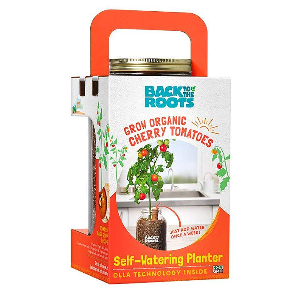 Back to the Roots Organic Cherry Tomato Self Watering Planter, Grow Cherry Tomatoes Year Round, Windowsill Indoor Garden Kit