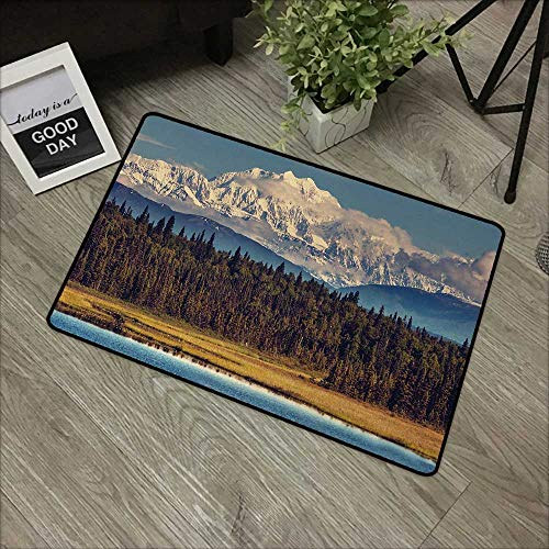 pad W16 x L24 INCH Alaska,Colorful Summer Season in Northwest America Snow White Mountains River Fresh Forest,Multicolor Natural dye Printing to Protect Your Baby's Skin Non-Slip Door Mat Carpet