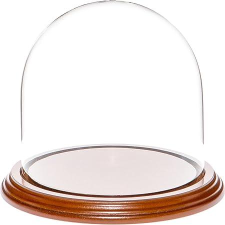 Plymor Brand 5.5 x 5.5 Glass Display Dome Cloche Walnut Veneer Base