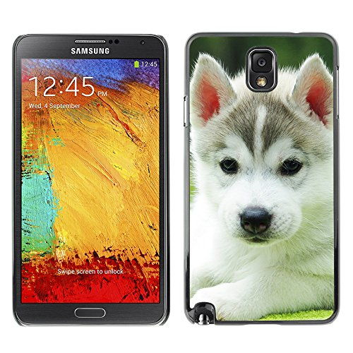 moveway-smartphone-case-back-lovely-dog-picture-image-black-edge-cover-for-samsung-galaxy-note-3-iii