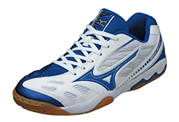 Awe Inspiring Mizuno Wave Medal 4 Table Tennis Shoes Blue White 295G Interior Design Ideas Oteneahmetsinanyavuzinfo
