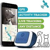 Kippy vita KV0001BL GPS e Activity Tracker per animali domestici