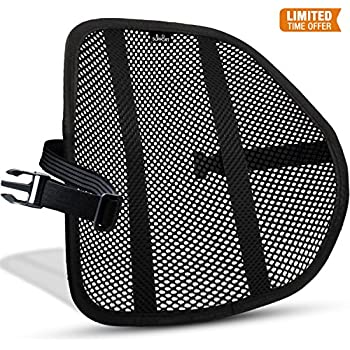 Amazon Com Easy Posture Lumbar Back Support Mesh Black