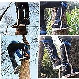 HUAWELL Tree Climber Set,Climbing Spikes Includes