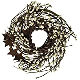CWI Gifts Pip and Twig with Rusty Star Wreath, 10-Inch, Ivory