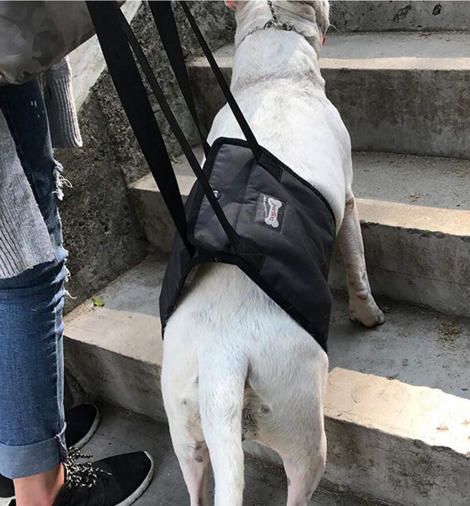 Diyafas Arnés de Rehabilitación de Apoyo para Perros Eslinga de Ayuda Auxiliar for Mascotas Discapacitados Lesionados Ancianos