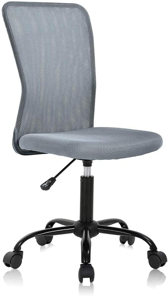 Ergonomic Desk Chair Mid Back Mesh Chair Height Adjustable Office Chair, Home Office Chair Modern Task Computer Chair No Armrest Executive Rolling Swivel Chair with Casters,Grey