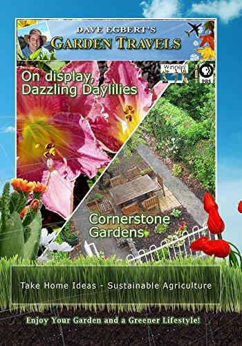 Garden Travels On display, Dazzling Daylilies Cornerstone Gardens