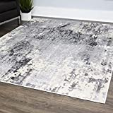 "Home Dynamix 529-451 Rainer Vintage Area Rug, 31""x47"", Gray"