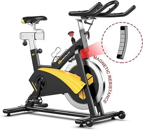 Goplus Bicicleta de ejercicio magnética, bicicleta estática con ...