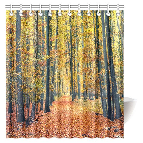 InterestPrint Farm House Decor Collection, Pathway in Colorful Autumn Forest Sunbeams Golden Leaves Trees Seasonal Scenics Print Fabric Bathroom Shower Curtain Set, 66 X 72 Inches (Autumn Shower Curtain 66)