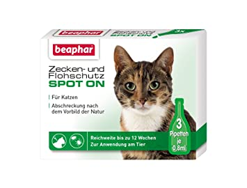 Beaphar garrapatas- y Antipulgas Spot-On 3 x 0.8 ml: Amazon.es: Productos para mascotas