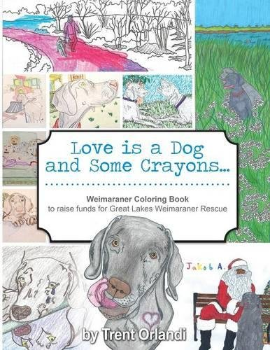 Love is a Dog and Some Crayons A Weimaraner Coloring Book [Orlandi, Trent] (Tapa Blanda)