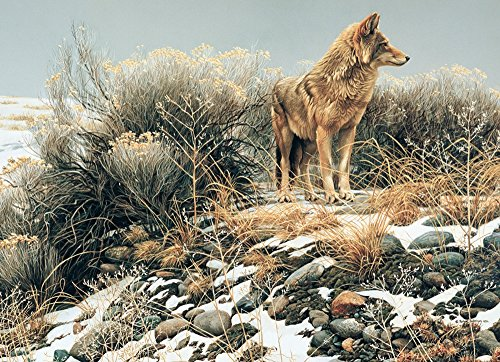 Cobble Hill Coyote in Winter Sage Jigsaw Puzzle, 1000-Piece