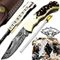 """Stag Horn 6.5'' Custom Handmade Damascus Steel Brass Bloster Back Lock Folding Pocket Knife 100% Prime Quality With Sharpening Rod Plus Buffalo Horn Stainless Steel Pocket Knive """"LIMITED OFFER"""""""