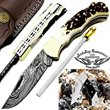 Stag Horn 6.5'' Custom Handmade Damascus Steel Brass Bloster Back Lock Folding Pocket Knife 100% Prime Quality With Sharpening Rod Plus Buffalo Horn Stainless Steel Pocket Knive