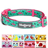 #7: Blueberry Pet 9 Patterns Pink Flamingo on Light Emerald Dog Collar, Small, Neck 12