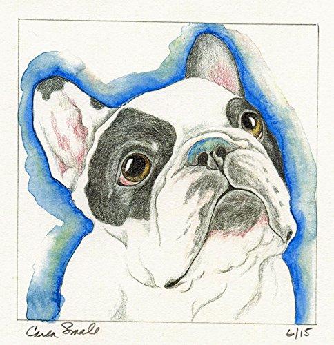 Pied Bulldog French (Pied French Bulldog Limited Edition Print-Pet Dog Art-Carla Smale)