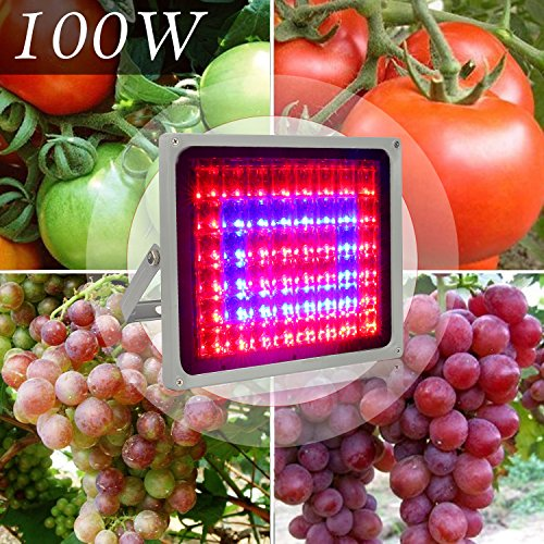 Derlights 100W LED Grow Light Full Spectrum Indoor Hydroponic Plant Led Flood lights ,Blue 460nm &Red 630nm Bulb Lamp Lighting for Indoor Plants Seeding Growing and Flowering (100W) by Derlights