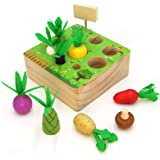 AFOUNDA Montessori Wooden Toy   Colorful Vegetables & Fruits with Different Shape Size Sorting Game   Preschool Learning Fine