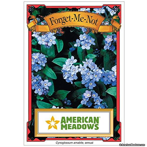 Seed Packets Forget Me Not (David's Garden Seeds Flower Seed Favor Packet