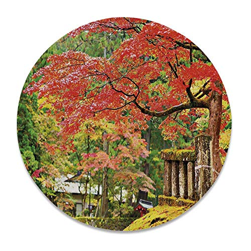 YOLIYANA Japanese Round Ceramic Decorative Plate,Autumn Scenery with Sakura Tree Cherry Blooms in Nikko Provinence Japan Decorative for Table Or Wall,7 inch
