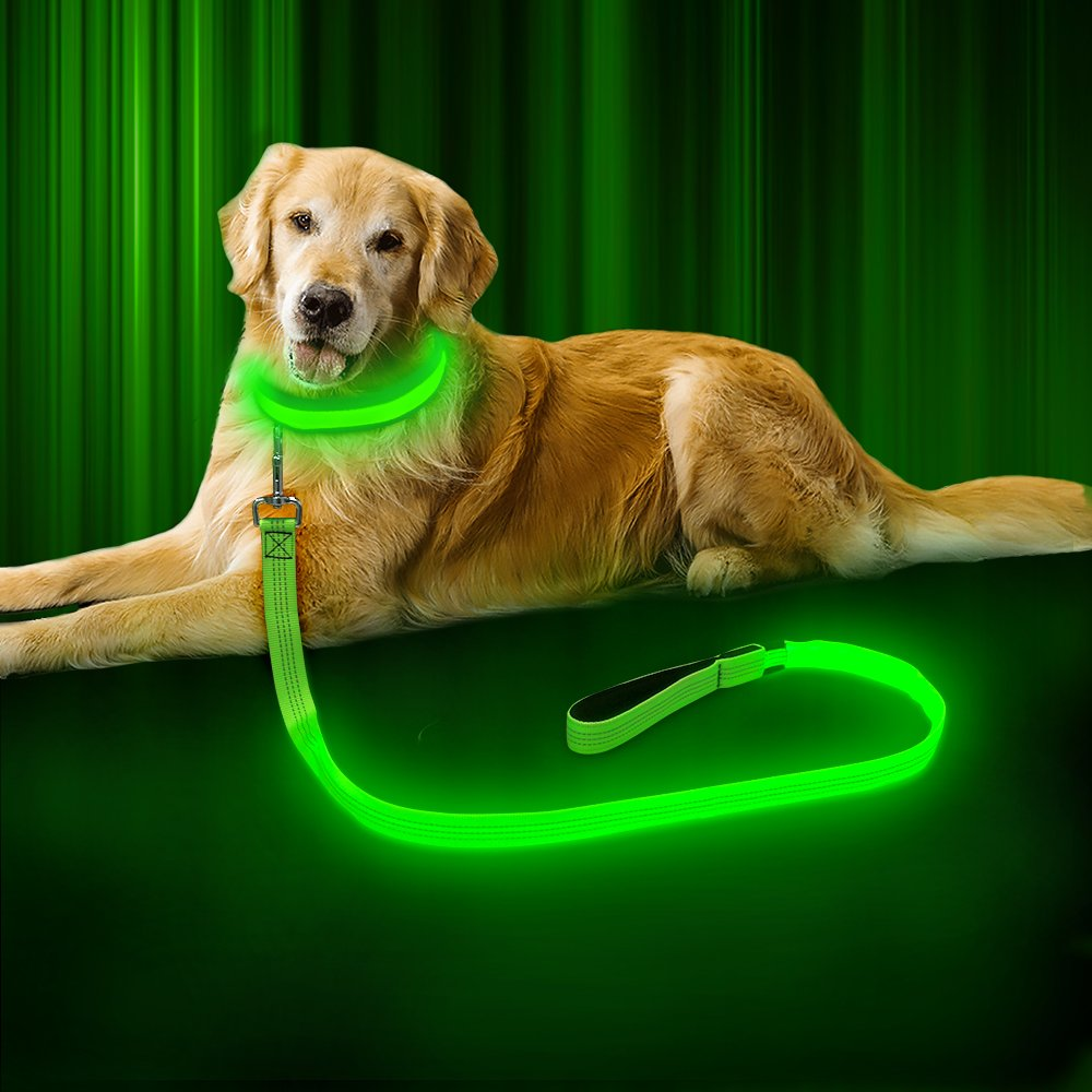 BSeen LED Dog Leash - 120 cm USB Rechargeable Reflective Night Safety Pet Leash LED Strip to Keep You and Your Dog Safe (Neon Green, 47.2 inch)