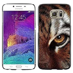 Paccase / Dura PC Caso Funda Carcasa de Protección para - Eye Feline Tiger Fur Cute Cat Big Animal - Samsung Galaxy S6 SM-G920