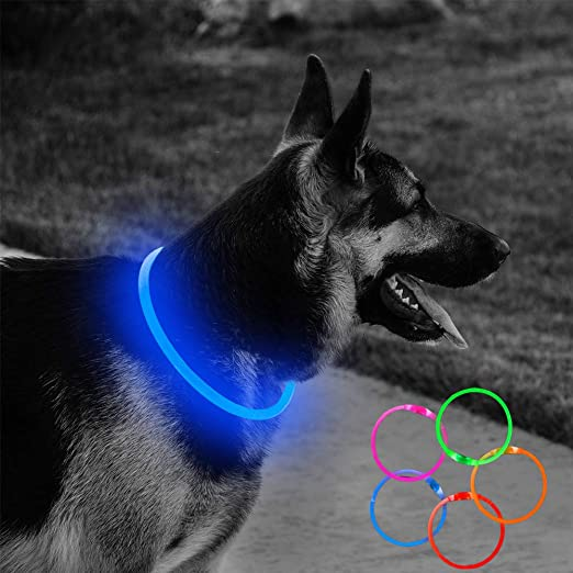 Clan_X USB Rechargeable LED Dog Collar - Bright Lighted Dog Collars Glow in The Dark Durable Pet Collars for Small Medium Large Dogs Keep Your Dogs Be Seen & Be Safe