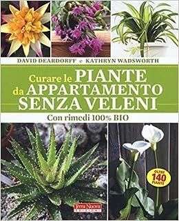 Piante Da Appartamento Come Curarle.Curare Le Piante Da Appartamento Senza Veleni Con Rimedi 100 Bio