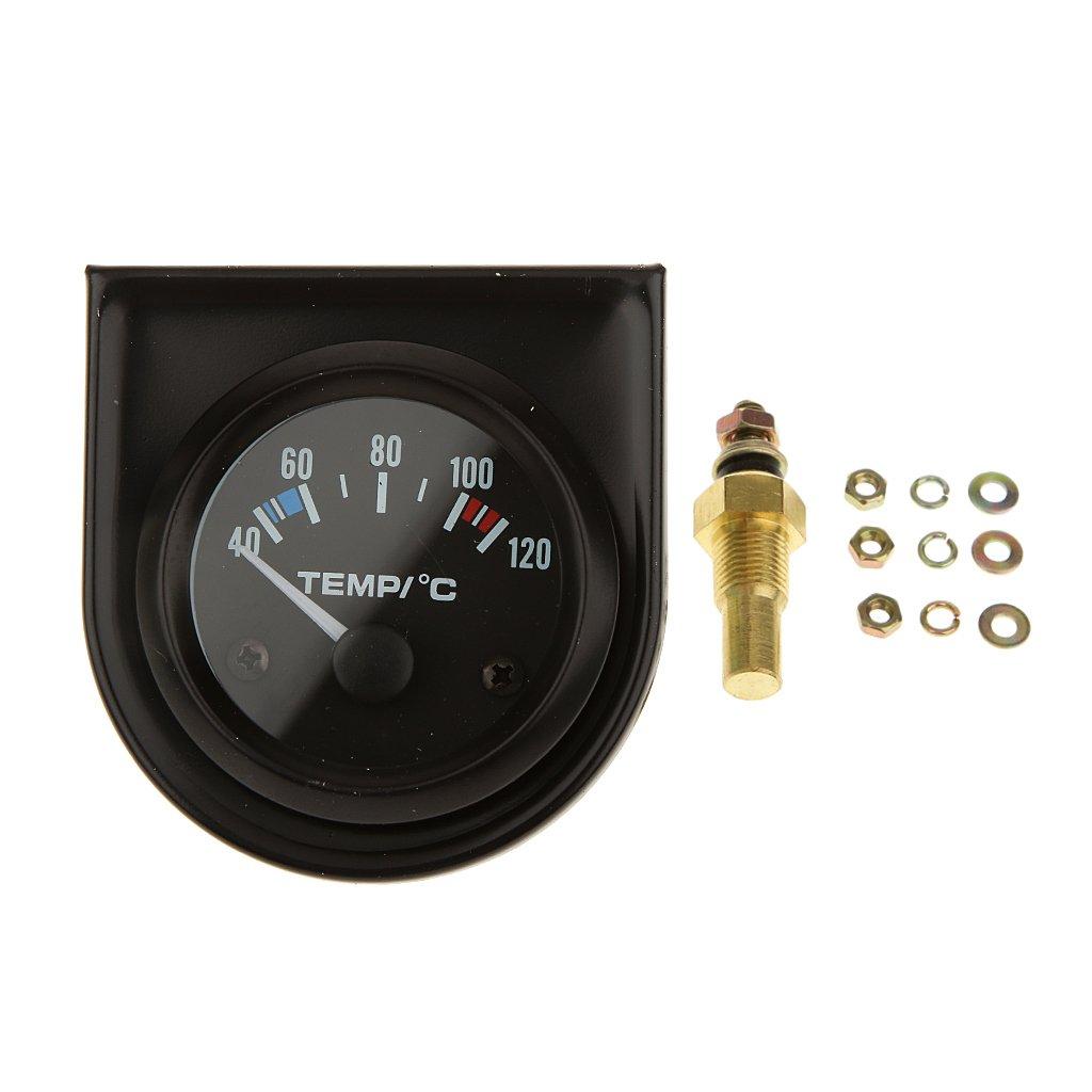 2' 52MM Digital Water Temperature Gauge Temp 100-250F 40-120C Generic