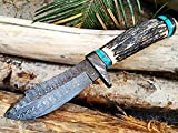 Black Mamba Knives BMK-111 Persian Yuma 9.5 Long 4.5 Blade 7 Ounce Damascus Hunting Fixed Blade Knife With Stag Antler and Turquoise Spacers
