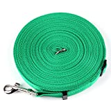 BIBSS 50FT Long Lead Adjustable Nylon Dog Leash Training Walking Play Camping Backyard Suitable Medium Small Dogs Cats (50FT, Green)