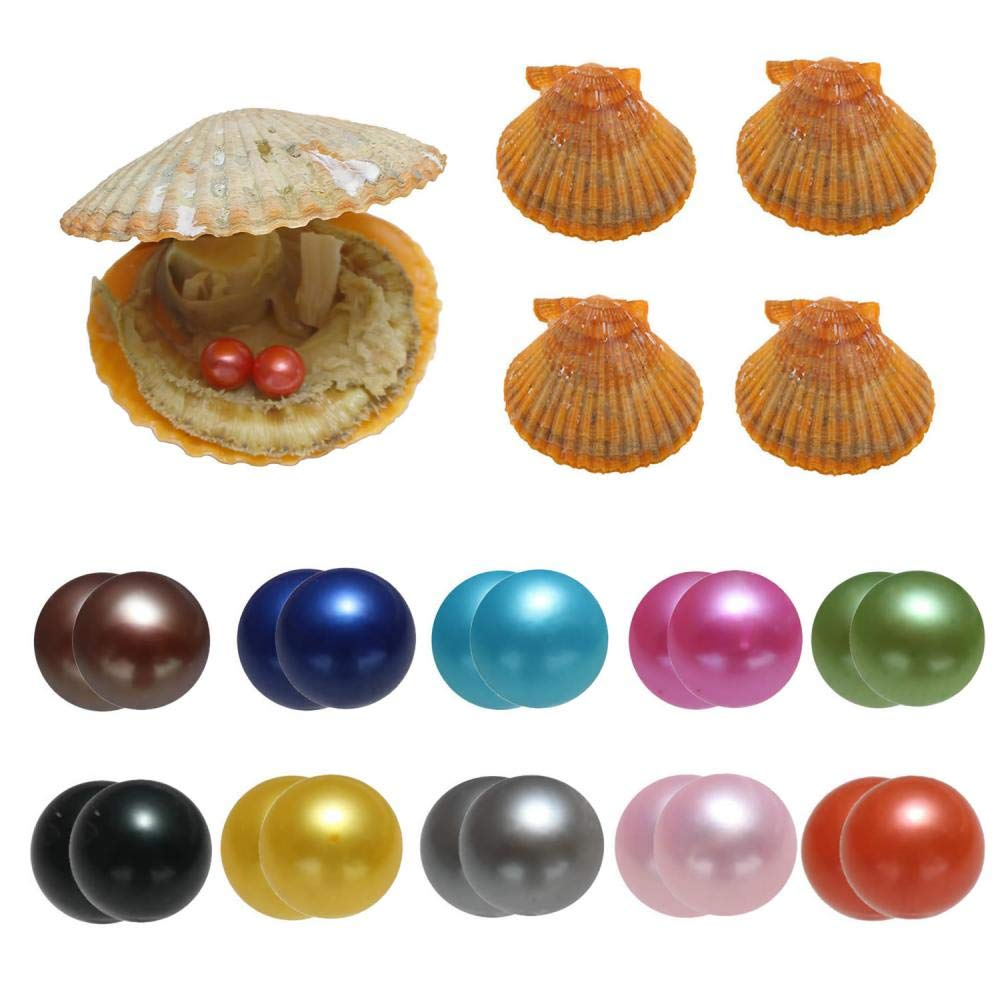 Akoya Twin Pearls Oysters, 10PC Saltwater Cultured Love Wish Red Oyster with 20 Round Pearl Inside with 10 Different Color (7-8mm)