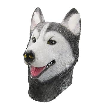 Amazoncom Bubinga Novelty Husky Dog Animal Head Masks Halloween