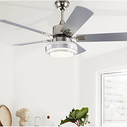52-Inch Stainless Steel Ceiling Fan with Dimmable LED Light White Warm Yellow 3-Lights Transform , 5 Reversible Silver Wood Blades, Reversible Mute Motor, Wireless Remote Control