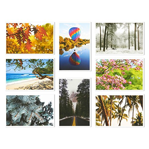 Set of 40 Four Seasons Postcards Print Variety Pack Fall Autumn Winter Summer Spring Theme Self Mailer Mailing Side Postcards 20 Different Picture Designs 40 Pack Postage Saver - 4 x 6 Inches Photo #7