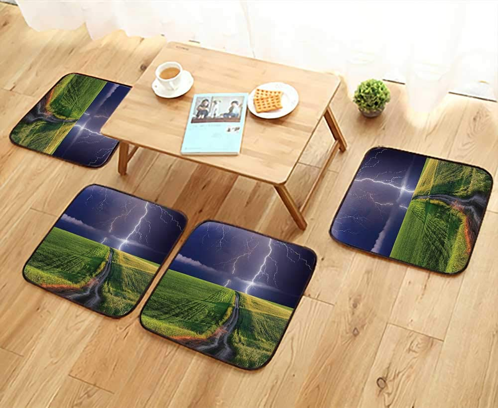 Leighhome Anti-Skid Chair Cushions Decor Summer Storm About to Appear with Flash on The Field Solar Illumination Health is Convenient W19.5 x L19.5/4PCS Set