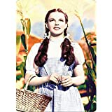Signs 4 Fun S4S4119 Wizard of Oz-Dorothy Small Parking Sign